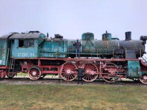 Ragnar ja Luukas said rongile. Autori erakogu.