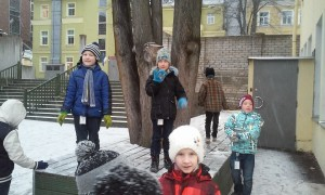 esimene lumi2